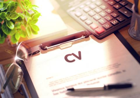 How To Mention Your Language Knowledge On A Cv Robert Half